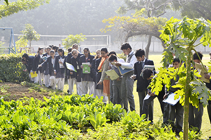 Gardening Somerville School Greater Noida India